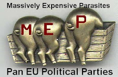 Pan EU Political Parties