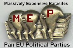 Pan EU Political Parties