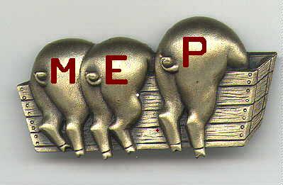 EU MEP Logo 02