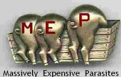 EU MEP Logo 03