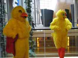 UKIP CHICKEN PROTEST 01