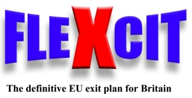 FLEXCIT Logo 01
